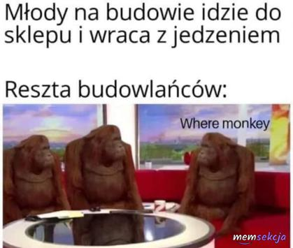 Młody nie przyniósł małpki