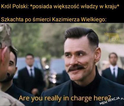polscy królowie kontra polska szlachta