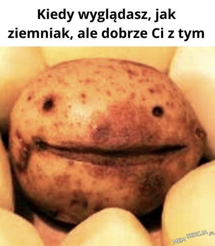 Kiedy wyglądasz jak ziemniak, ale dobrze ci z tym. Śmieszne. Uśmiechnięty  Ziemniak
