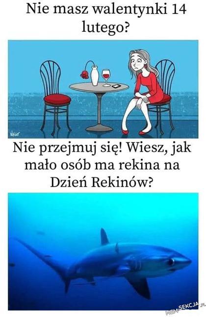 Ile osób ma rekina?