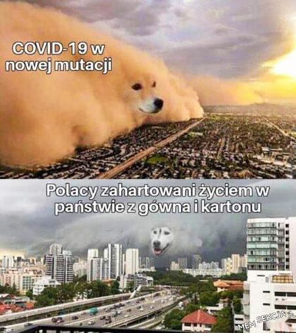 COVID w nowej mutacji vs zahartowani Polacy