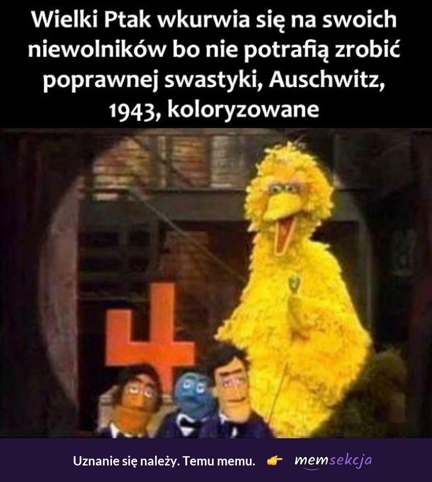 Wielki Ptak wku*wia sięna swoich niewolników. Śmieszne. Wielki  Ptak. Czarny  Humor