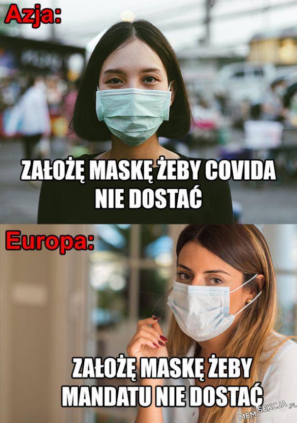 W Europie jak w lesie