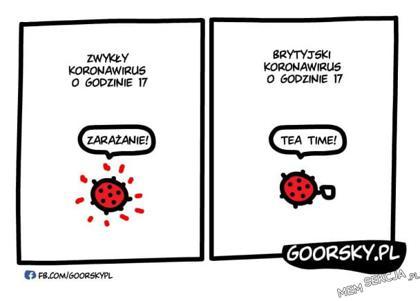Koronawirus w Anglii. Komiksy