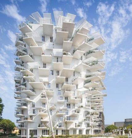 architekt płakał jak projektował
