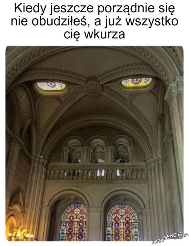 Wkurzona katedra