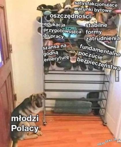 nie dla psa