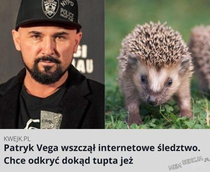 Patryk Vega wszczął internetowe śledztwo