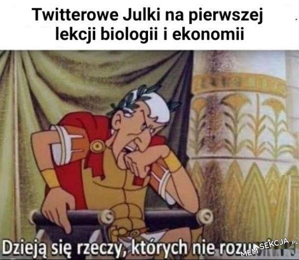 Ah te twitterowe Julki