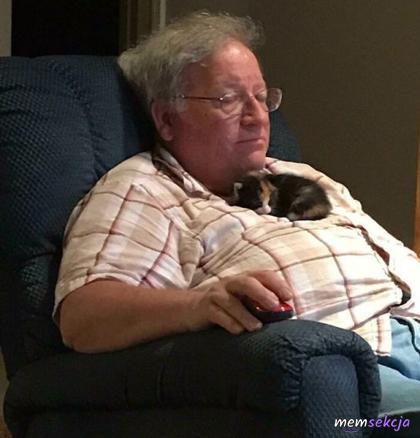Kotek śpi u Pana