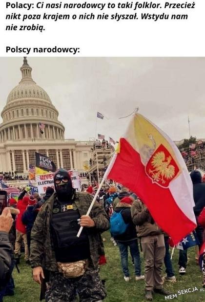 Polacy szturmują Kapitol. Memy