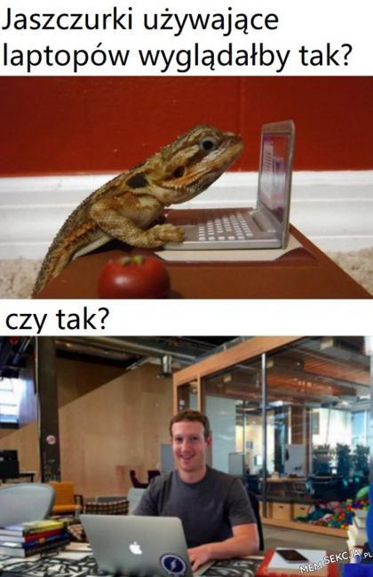Jak wyglądałyby jaszczurki używające laptopów?