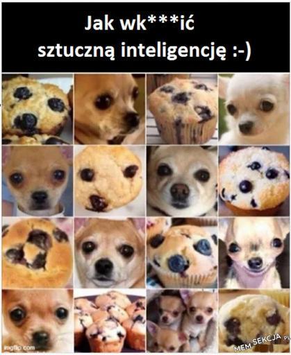 Jak oszukać sztuczną inteligencje