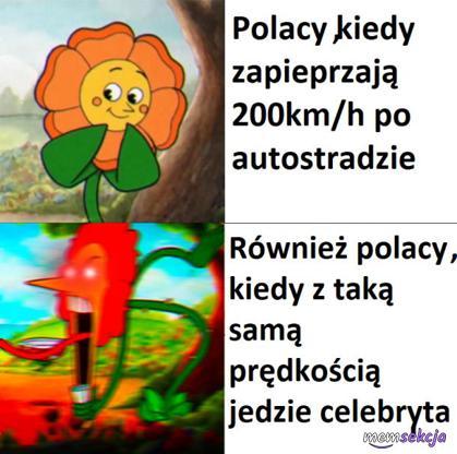 Polacy kiedy widzą celebrytę