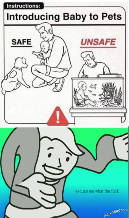 Jak zapoznać dziecko ze zwierzętami domowymi