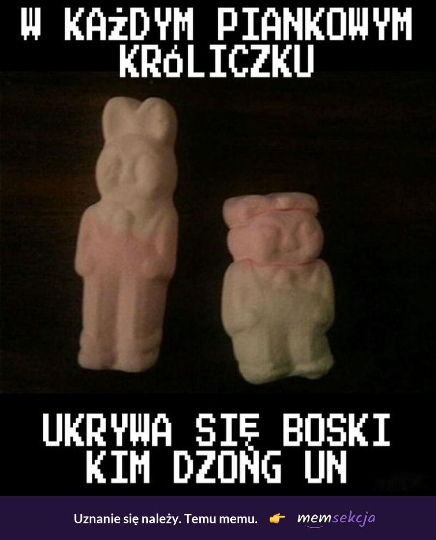 W każdym piankowym króliczku ukrywa się Kim Dzong Un. Memy. Kim  Dzong  Un