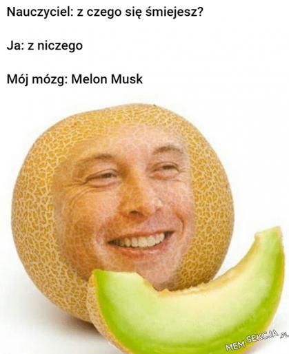 Melon Musk