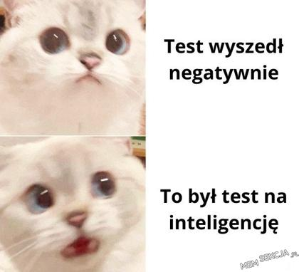 Kiedy test wychodzi negatywnie