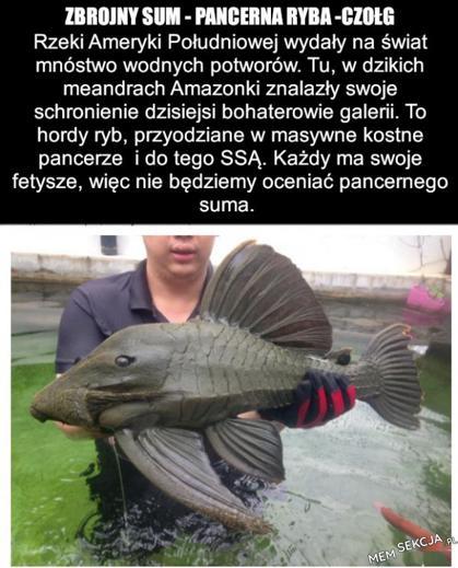Zbrojny sum- pancerna ryba-czołg
