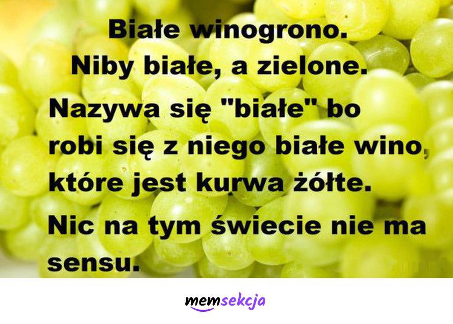 Niby białe winogrono, a zielone. Memy. Wino. Winogrono