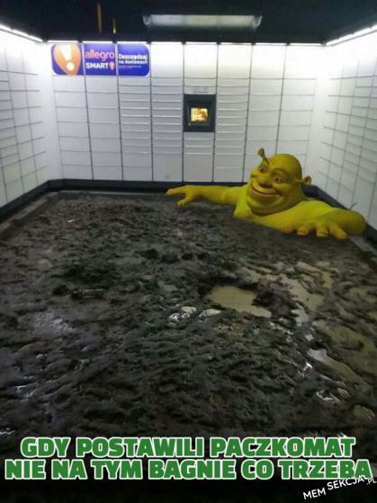 Paczkomat na bagnie Shreka