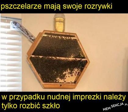 Pszczelarze mają swoje rozrywki
