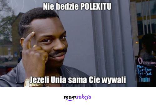 Nie będzie Polexitu, jeśli Unia sama Cię wywali. Memy. Unia  Europejska. Polexit