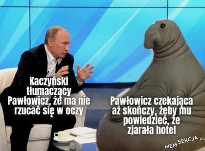 Kaczyński i Pawłowicz