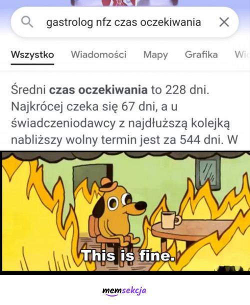 Czas oczekiwania na gastrologa na NFZ. Memy. Polska. This  Is  Fine. Nfz