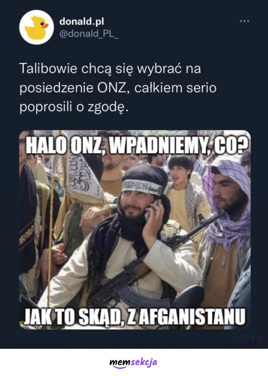 Talibowie chcą wpaść na posiedzenie ONZ. Memy. Talibowie. Onz. Afganistan