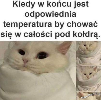 Kiedy w końcu jest odpowiednia temperatura, zeby chować się w całości pod kołdrą