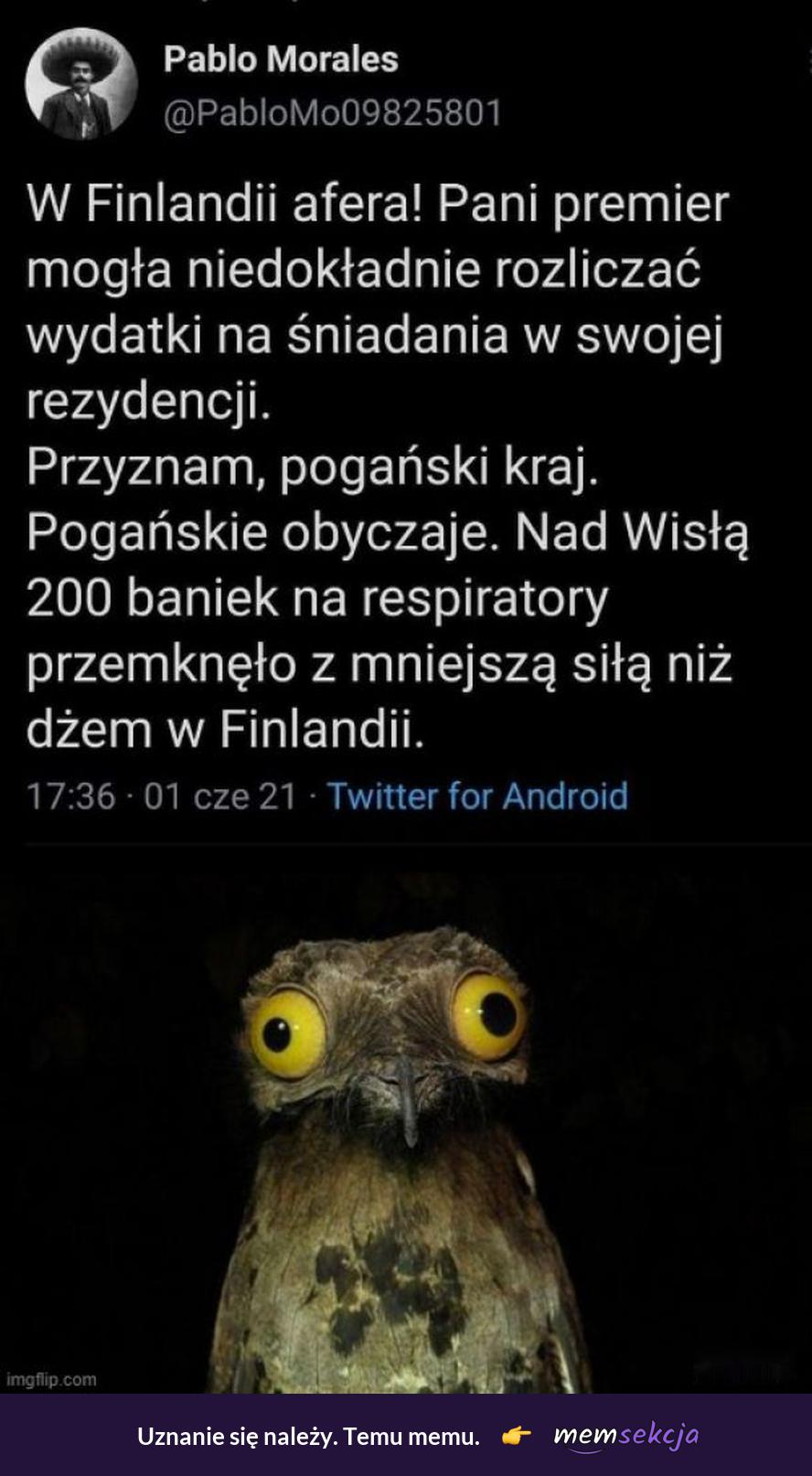 Fińska afera vs Polska afera. Memy. Afera. Polska. Finland