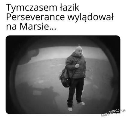 Marcin Najman jako łazik Perseverance na Marsie