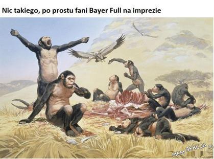 Fani Bayer Full na melanżu