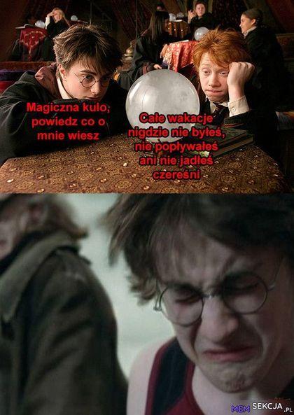 Co magiczna kula wie o Harrym Potterze