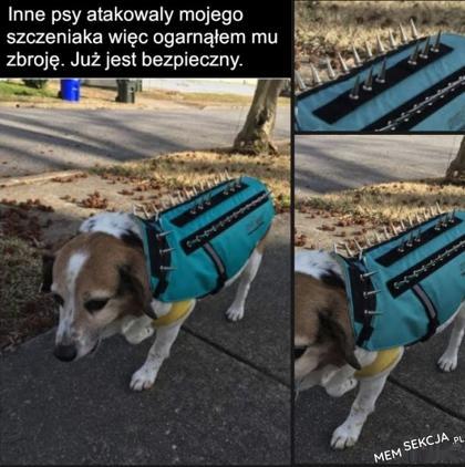 Zbroja dla psa