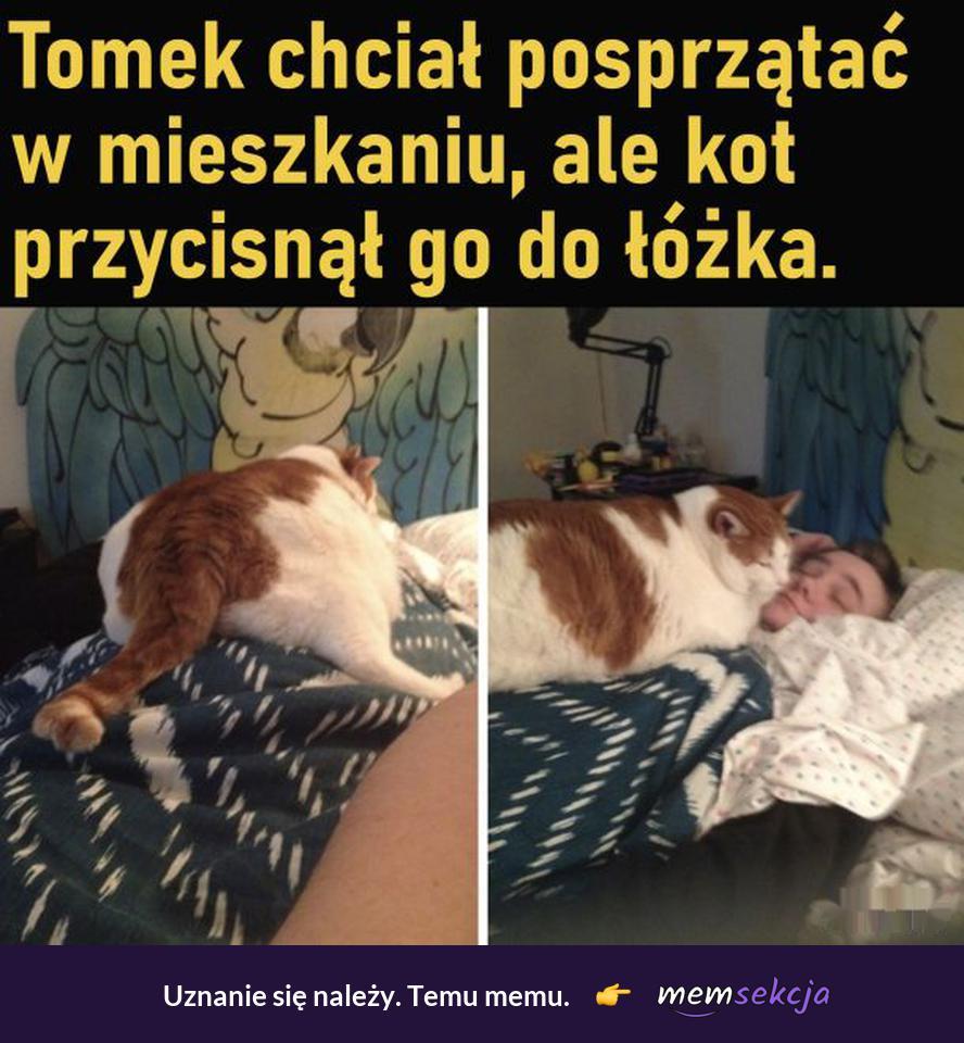 Kot przycisnął go do łóżka. Śmieszne koty. Sprzątanie. Obowiązki