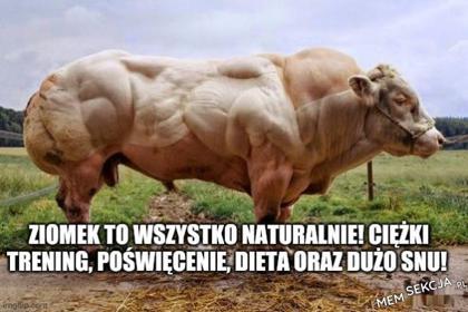 Naturalny bodybuilder