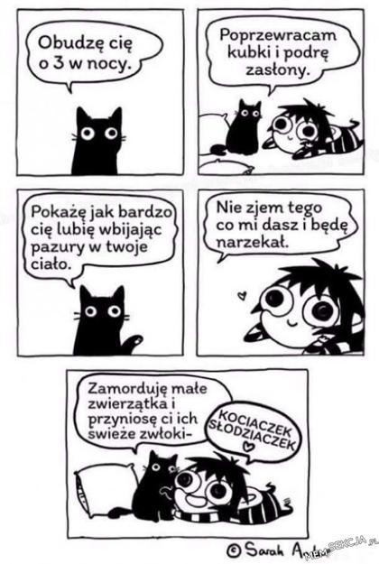 ale ładnie miauczy