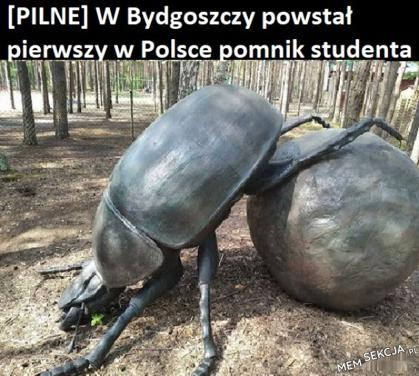 Pomnik studenta w Bydgoszczy. Memy. Studia. Student. Bydgoszcz