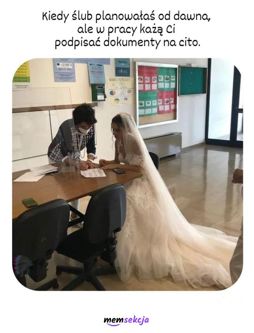 Ślub kontra praca. Śmieszne. Ślub. Praca