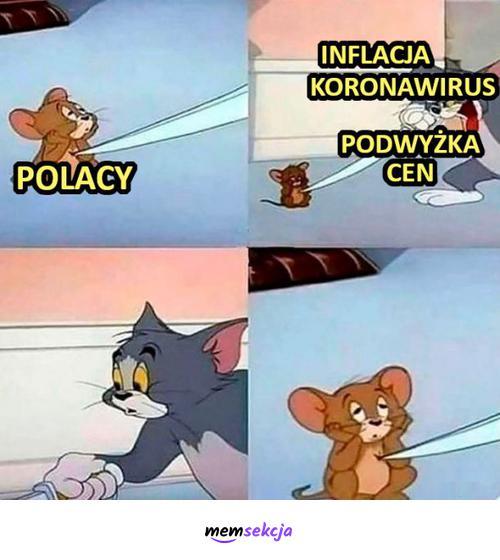 Reakcja Polaków na inflację, koronawirus i podwyżki cen. Memy. Inflacja. Polacy. Tom  I  Jerry