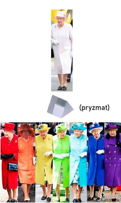 Królowa wielokolorowa
