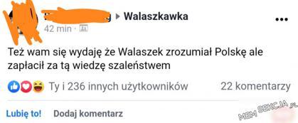 Walaszkawka