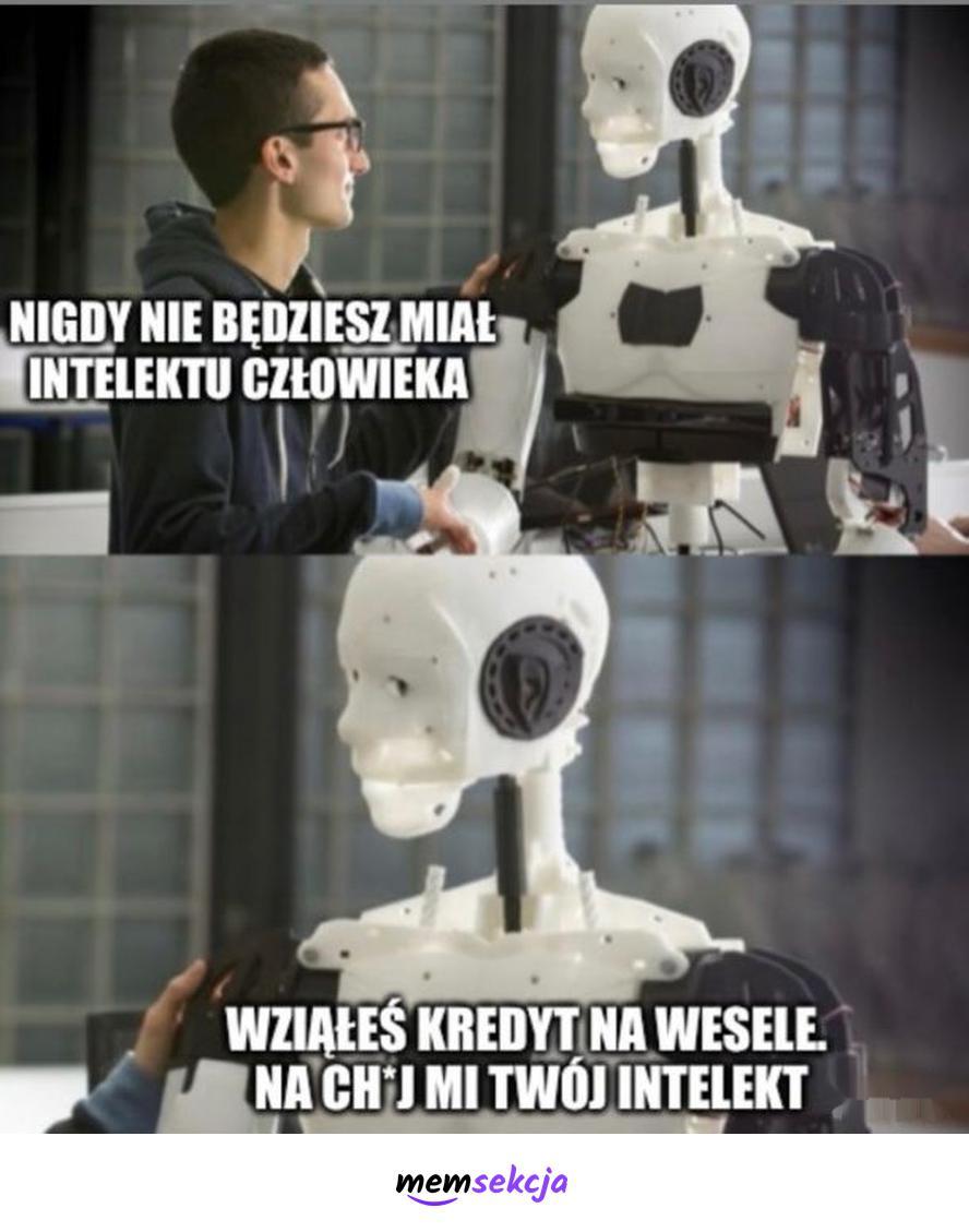 Intelekt człowieka. Memy. Roboty. Ai