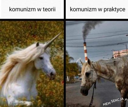 Komunizm w teorii i w praktyce. Memy