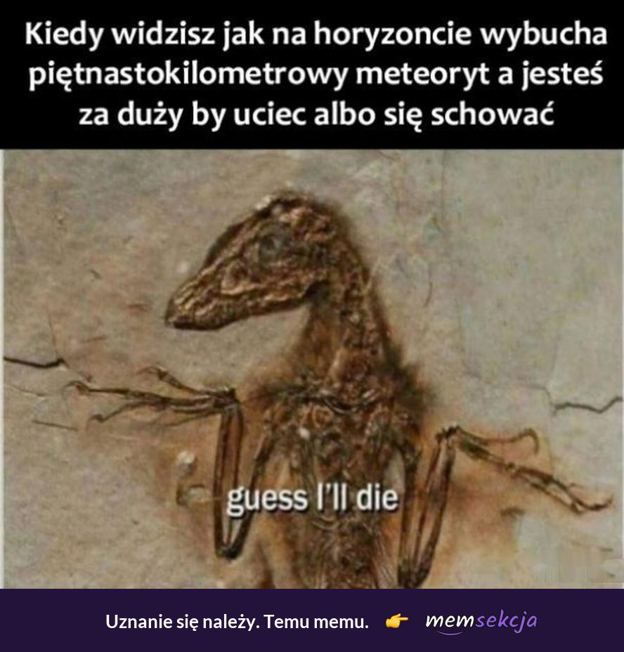 Kiedy widzisz meteoryt na horyzoncie. Memy. Dinozaur. Meteoryt