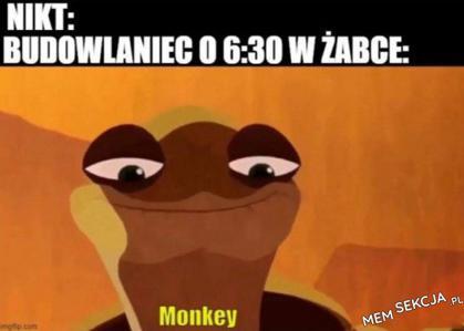 Poproszę małpeczkę