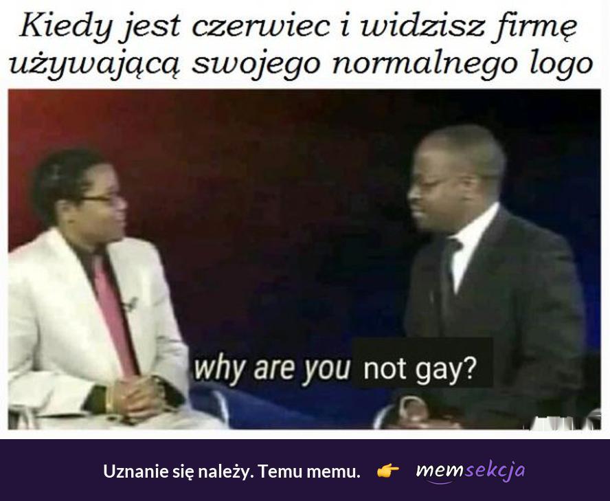 Kiedy jest czerwiec i widzisz firmę bez tęczowego logo. Memy. Geje. Why  Are  You  Not  Gay