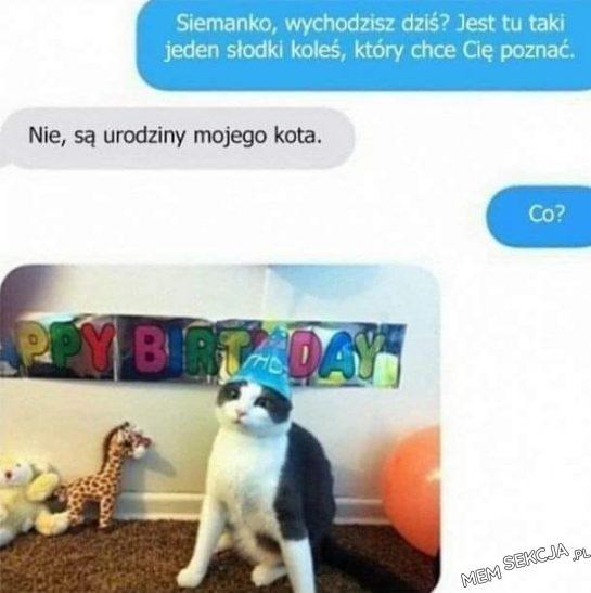 Kitku ma urodziny